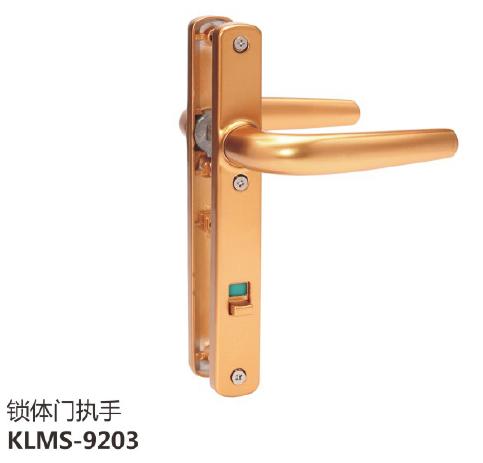 锁体门执手KLMS-9203.png