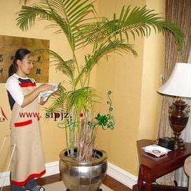 上海家政涉外服务