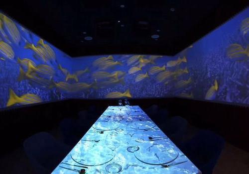 兰维乐全息3D餐厅