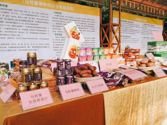 2016�V�|省�R�薯主食化�鹇钥破招��骰�又苄侣��l布��