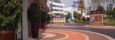 上海安迪ag入口登录施工案例——公司道路