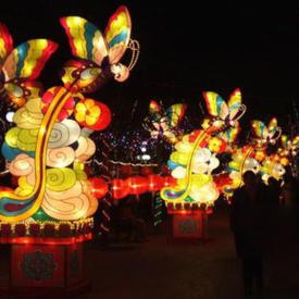 节日氛围彩灯