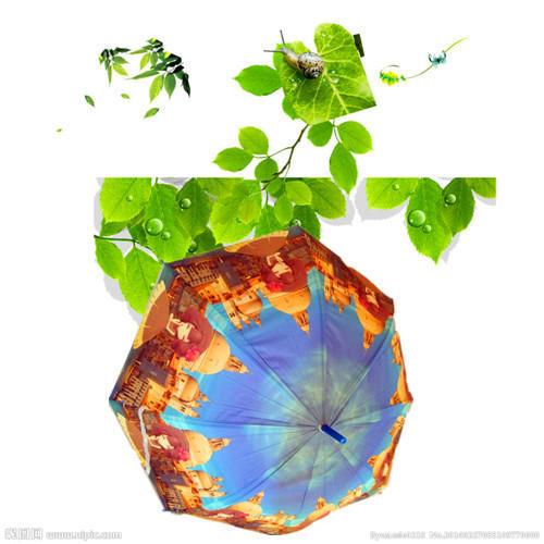长款花色雨伞