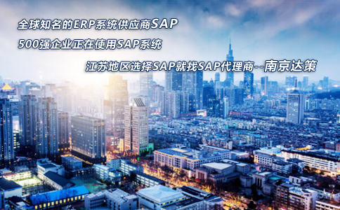 南京SAP咨询公司
