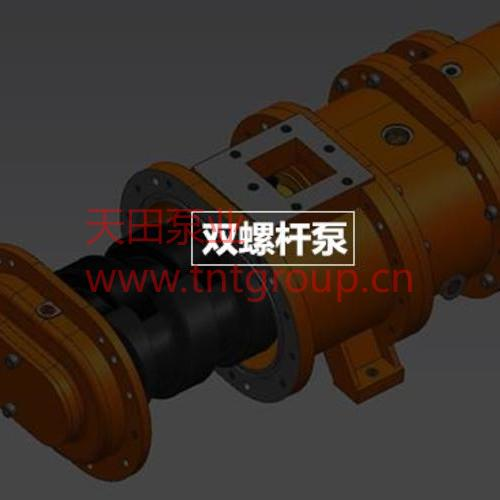 双橡胶螺杆泵