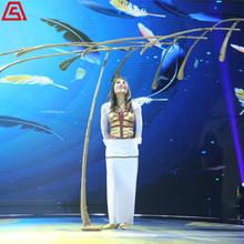 上海节目演出-羽毛平衡艺术