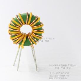 环形共模电感01