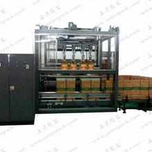 自动装箱机  SL-ZDX02