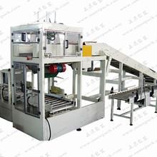 软袋装箱机  SL-RDX01