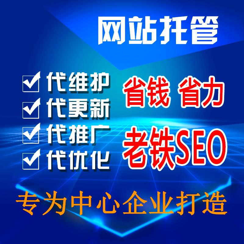 网站托管代运营 原创文章代发内容更新代写 SEO优化维护推广外包