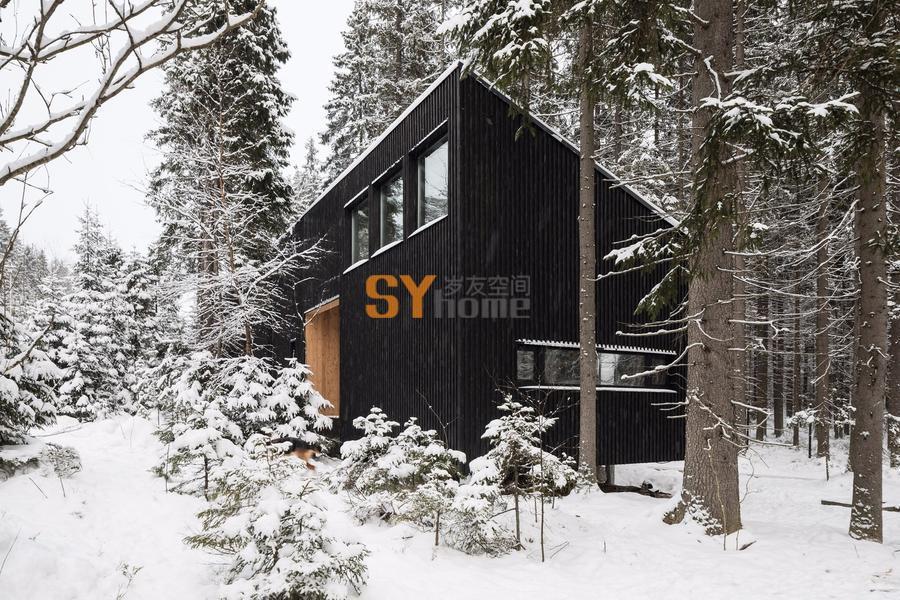 与森林融为一体的艺术家住宅
