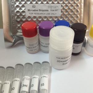 人雌二醇(E2)ELISA试剂盒 分类:ELISA KIT→Human ELISA KIT