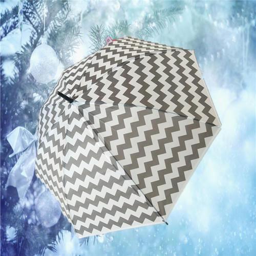 精美时尚雨伞TMC