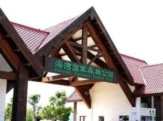 李也文旅旅游专家团队助推海湾森林管理升级服务优化