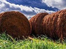 稻草,用创意诉说永恒的乡村情怀