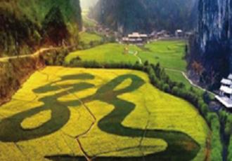 贵州黄果树关岭旅游