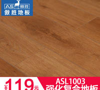 ASL1003
