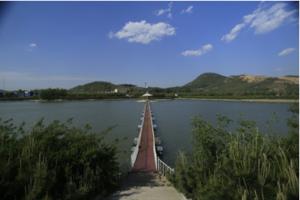 山东杨庄旅游项目开发整体策划