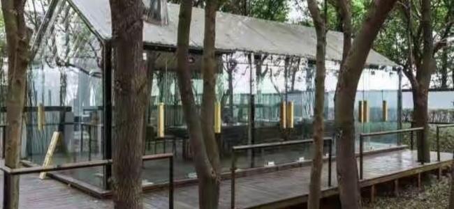 藏在树林中的茶室,你可以在这里度过一个美好的下午茶…….jpg