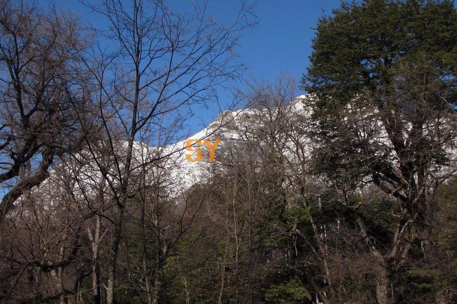 青翠山涧中的温馨小屋