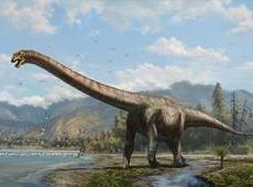 旅行社,你一定要明白恐龙是怎么死的