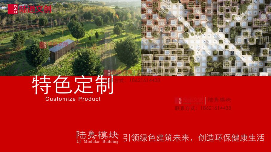 陆隽模块-特色定制产品手册.001.jpeg.jpg