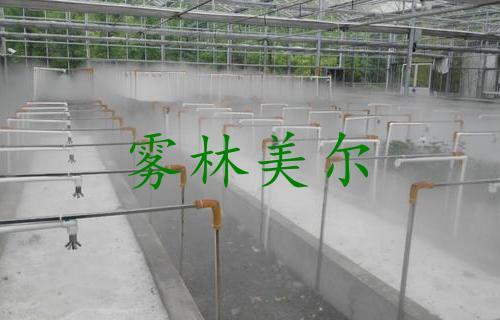苗床高压喷雾加湿