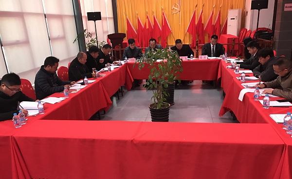 庐江上海商会党支部召开支部大会学习新党章
