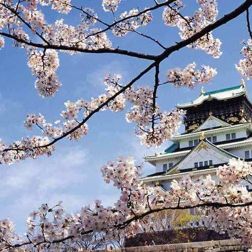 【日本留学】在日本留学所需要的各种费用