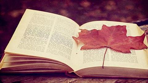 考研英语写作:逻辑关系衔接,因果关系...