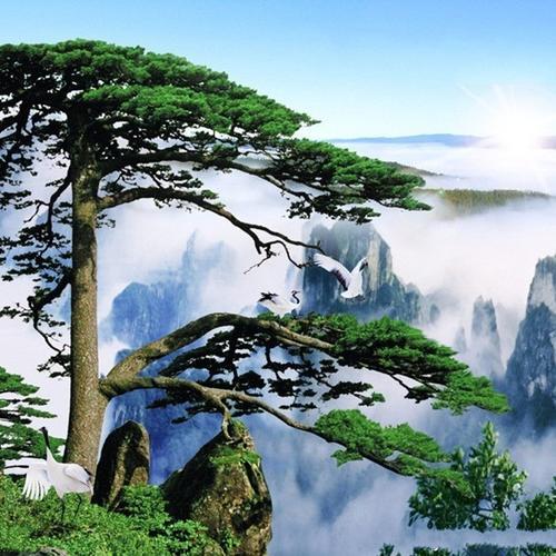 上海到安徽黄山租车、包车价格