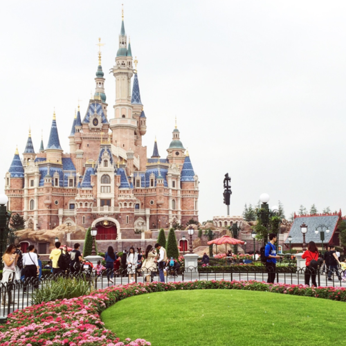 上海迪士尼主题酒店草坪供应商