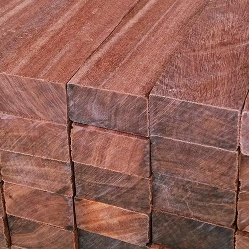 广西老铁木