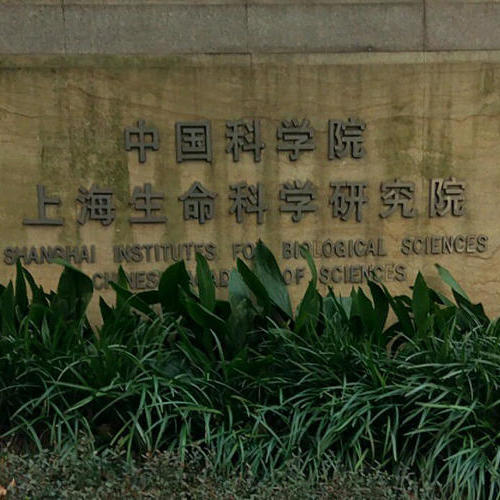 中科院上海生物研究所办公楼弱电智能化项目