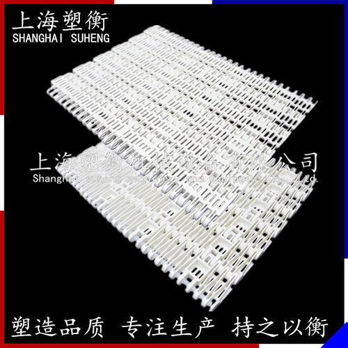 5966平格塑料網帶