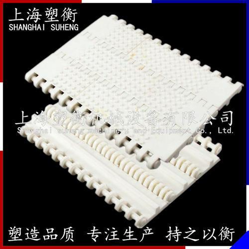 800微突塑料網帶
