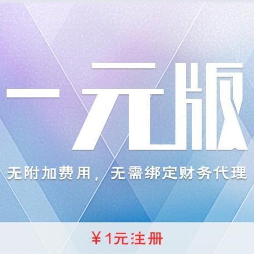 上海注册公司一元版