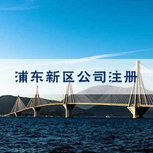 浦东注册公司选临港新城500元含地址一套章