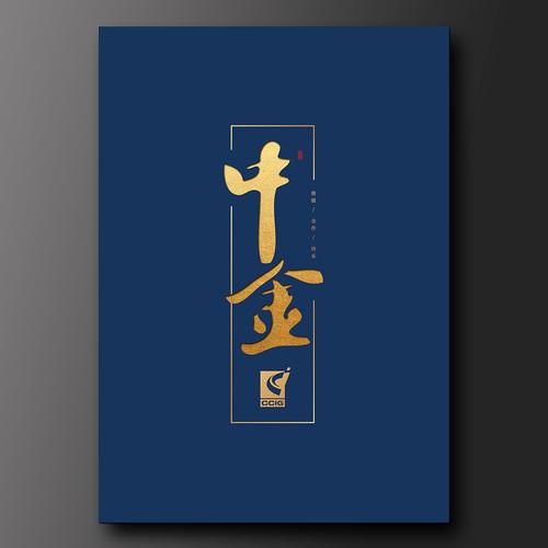 上海中金集團宣傳冊