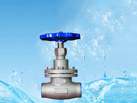 LNG用低溫短軸截止閥
