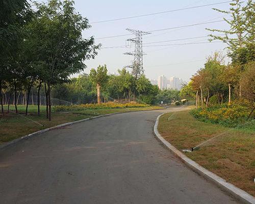 邯郸市高铁森林公园