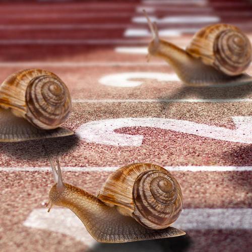 扩大行业竞争优势,提高客户忠诚度