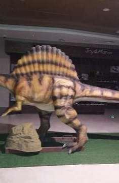 重大发现,首例群体恐龙足迹在武威被发现,足迹多样轰动全城!