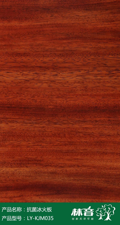 LY-KJM035 圆盘豆(小).jpg