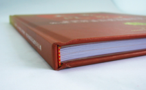 轻工协会精装画册印刷案例欢赏