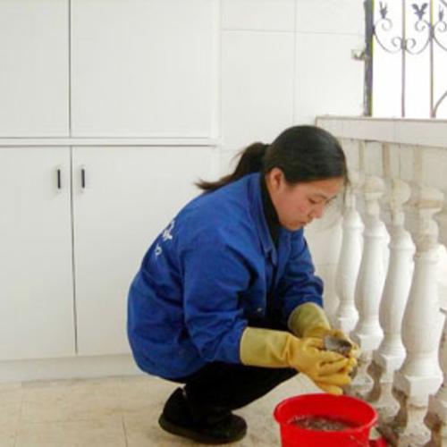 用合适的保洁工具和清洗剂