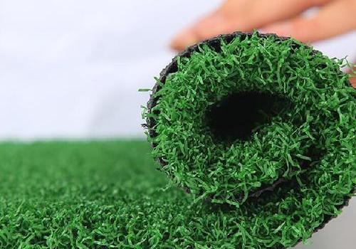 高爾夫/門球草