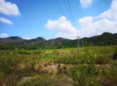 猜客电竞签约浦江县古塘村休闲养生项目,同谋项目将来开展