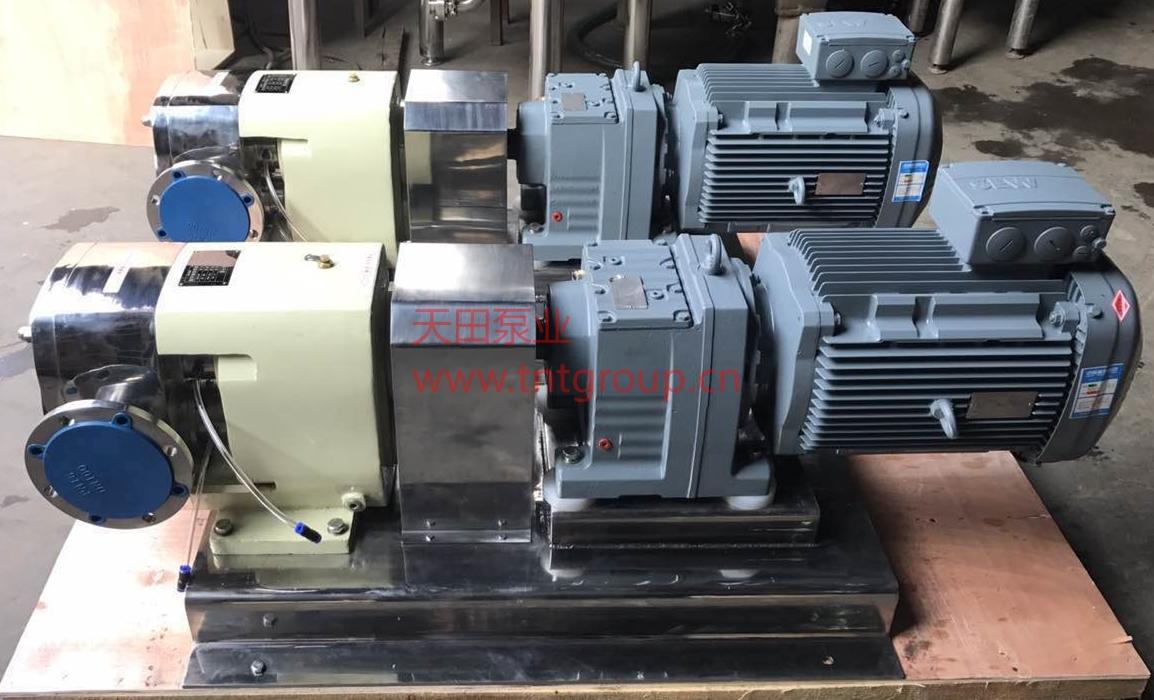 TRA型转子泵 法兰.jpg