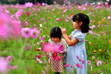 外国人劳动者或可永驻日本,需熟练掌握技能